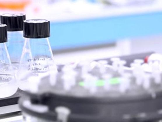 MedinCell agrandit ses laboratoires et recrute 20 personnes